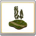 Gras & Bäume