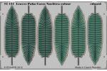 Leaves Palm Cocos Nucifera